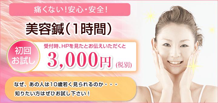痛くない!安全・安心!美容鍼 初回お試し3,300円